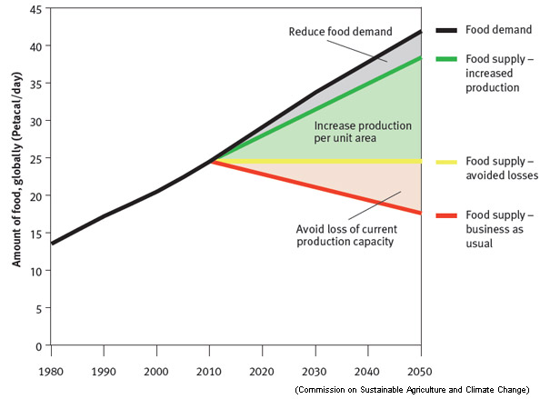 feeding the world in 2050 Focusing on innovation, markets, people, and political leadership is necessary to feed a growing population expected to reach 9 billion by 2050.