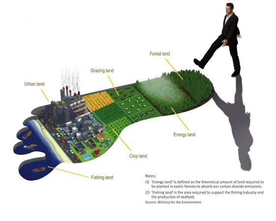 NZ footprint