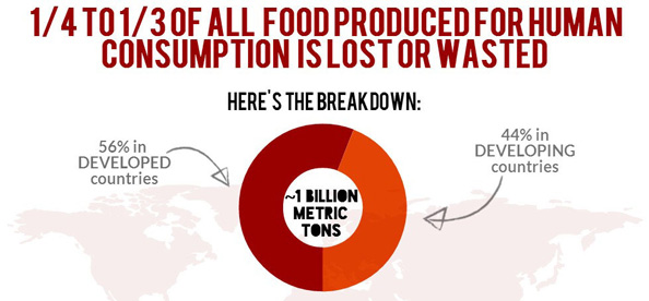 food-waste-breakdown