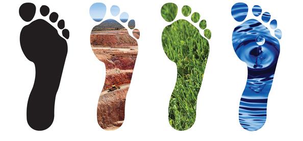 four-footprints