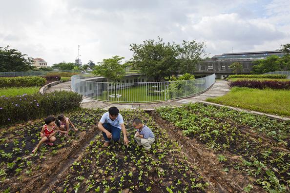 kindergarten-roof