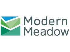 modern meadow