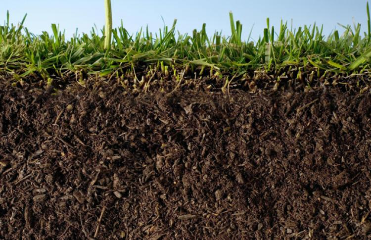 What is soil anyway make wealth history for What is dirt made up of