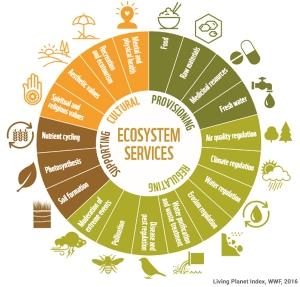 ecosystem-services